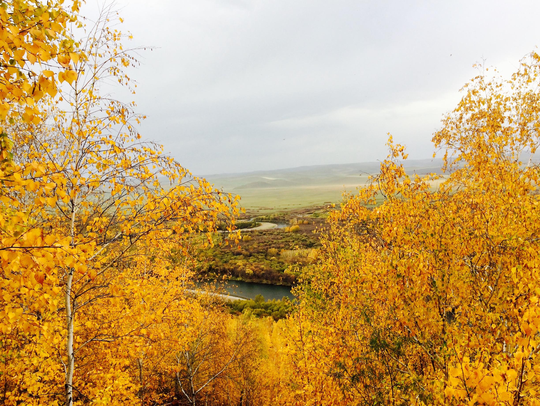 Wetlands in Hulun Buir